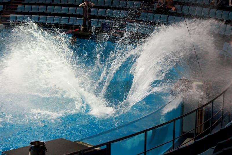 アクアパーク水しぶき
