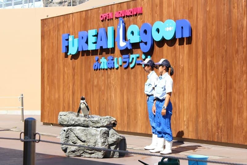 八景島ふれあいラグーン