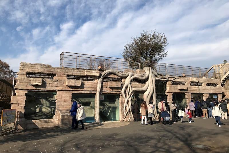 東武動物公園ホワイトタイガー舎